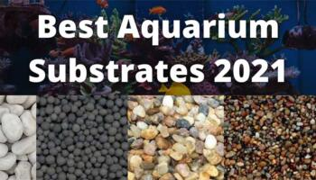 Best Aquarium Substrates – Reviews and Buying Guide 2021